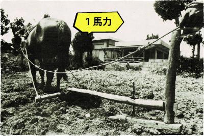 馬・牛に使った漉き