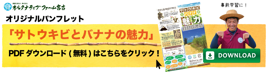 弊社オリジナルパンフレット「サトウキビとバナナの魅力」DLリンク