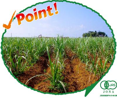 ポイント:生きた土で育てる