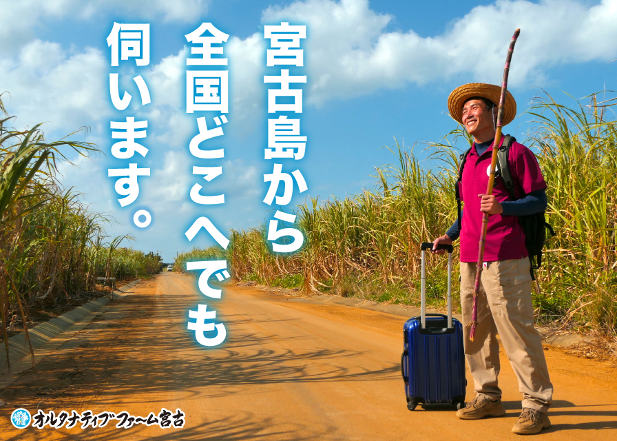 畑の中で出張姿の松本代表