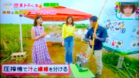 メディア掲載写真:「王様のブランチ」(TBSテレビ)
