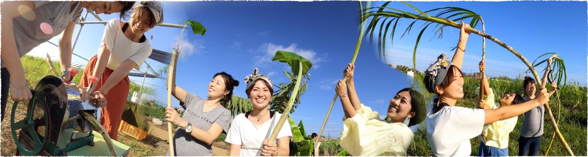 畑で農業体験する女子3人