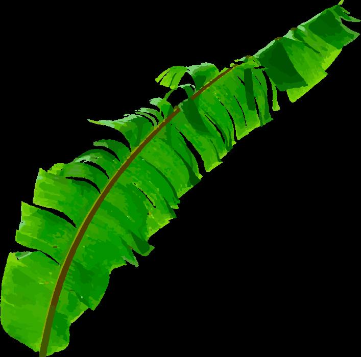 バナナの葉左