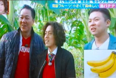 「あさパラ!」(読売テレビ)にて「島バナナ」が紹介されました!