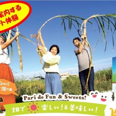 6月30日までキャンペーン実施中:【Zoomで案内】サトウキビの栽培~黒糖作りまで 『サトウキビの魅力丸かじり』 体験