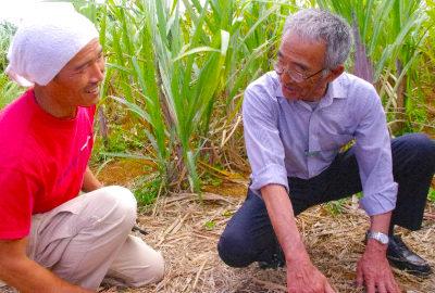 無肥料自然栽培の大先輩・「奇跡のリンゴ」の木村秋則さんが畑を訪ねて下さいました!