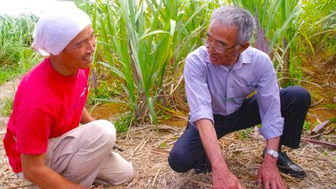 無肥料自然栽培の大先輩・「奇跡のリンゴ」木村秋則さん来訪写真